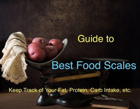 Top 5 Best Food Scales Reviews in 2019