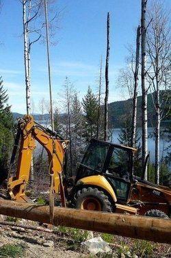 causes of rainforest destruction